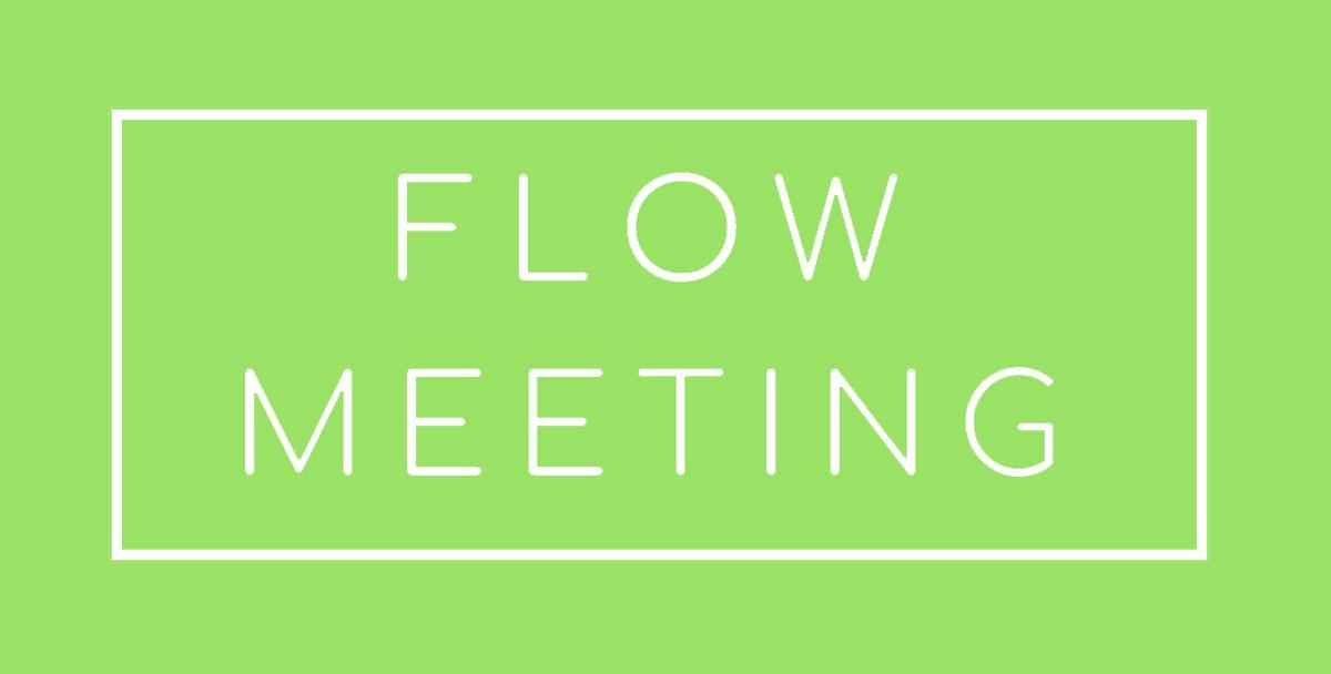 FlowMeeting kokoukset
